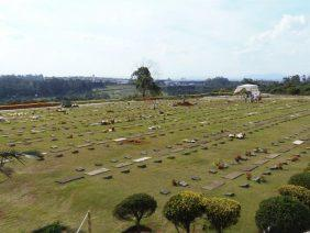 Coroas de Flores Cemitério Colina dos Ipes - Suzano - SP