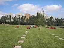 Coroas de Flores Cemitério Morumbi- SP