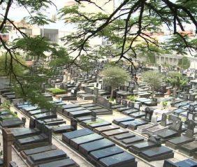 Coroas de Flores Cemitério Israelita (Vila Mariana) -SP