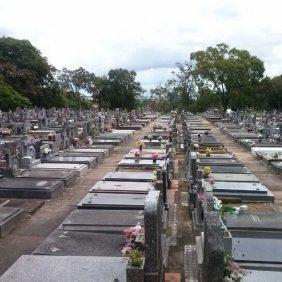 Coroas de Flores Cemitério Municipal São João