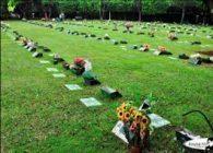 Coroas de Flores Cemitério Nacional Parque