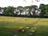Coroas de Flores Cemitério Popular Park Monte das Oliveiras