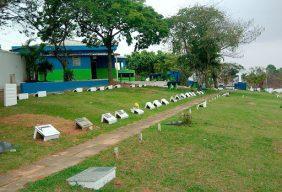Coroa de Flores Cemitério Municipal Nossa Senhora da Piedade – SP