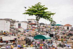 Coroas de Flores Cemitério São João dos Passos São José – SC
