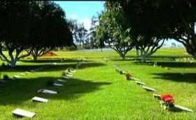 Coroas de Flores Cemitério e Crematório Jardim Metropolitano Valparaíso de Goiás – GO