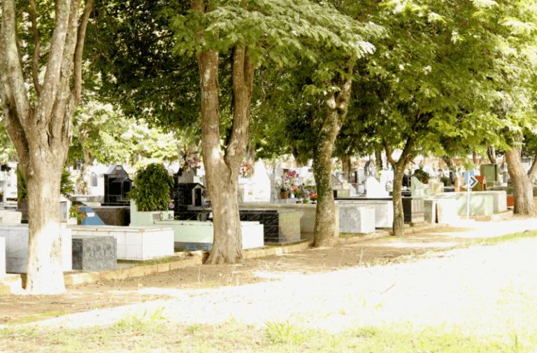 Coroa de Flores Cemitério São Francisco de Assis Arapiraca - AL