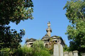 Coroa de Flores Cemitério Municipal de Novo Airão - AM