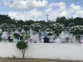 Coroa de Flores Cemitério Municipal de Tapauá – AM