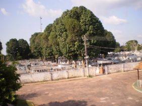 Coroa de Flores Cemitério Municipal de Moju – PA