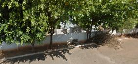 Coroa de Flores Cemitério Municipal de Palestina do Pará – PA