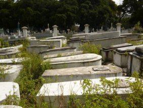 Coroa de Flores Cemitério Municipal de Santa Izabel do Pará - PA
