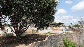 Coroa de Flores Cemitério Municipal de Uruará- PA
