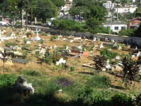 Coroa de Flores Cemitério Castanheiro – RJ