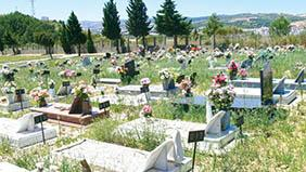 Coroa de Flores Cemitério Municipal de Japaratuba – SE