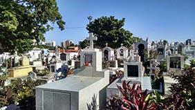 Coroa de Flores Cemitério Municipal de Queluz – SP
