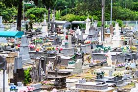Coroa de Flores Cemitério Municipal de São João do Pau d'Alho – SP