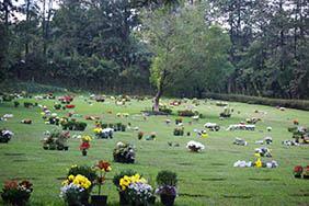 Coroas de Flores Cemitério da Comunidade Evangélica Luterana de Nova Friburgo