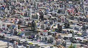 Coroas de Flores Cemitério Municipal de Álvares Florence – SP