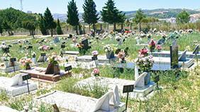 Coroas de Flores Cemitério Municipal de Américo de Campos