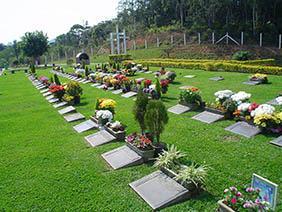 Coroas de Flores Cemitério municipal de Araucária – PR
