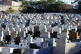 Coroas de Flores Cemitério Municipal de Campina do Monte Alegre – SP
