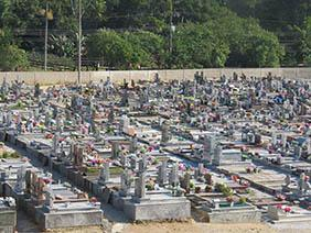 Coroas de Flores Cemitério Municipal de Flora Rica – SP