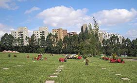 Coroas de Flores Cemitério Municipal do Ribeirão da Ilha