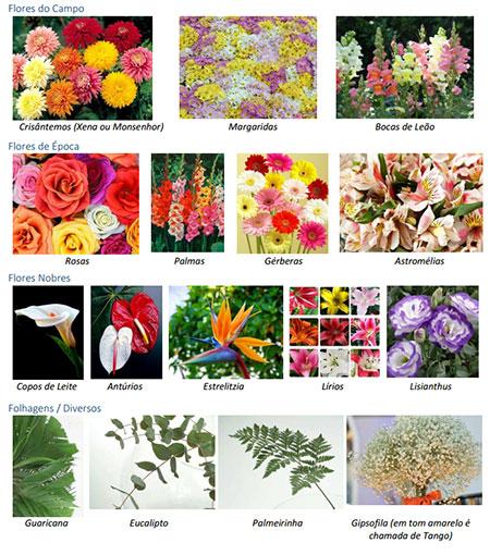 Flores que Compõem uma Coroa de Flores